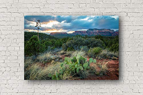 Southwest Photography Canvas Wall Art - Gallery Wrapped Canvas of Desert Landscape at Sunset Near Sedona Arizona Nature Decor 8x10 to 30x40