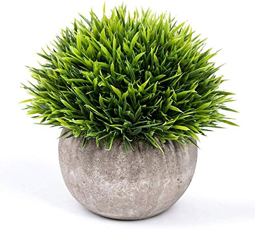 Artificial Green Plastic Plant for Table Decoration by RaajaOutlets
