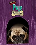 Pug, Lori Haskins Houran, 1597167509