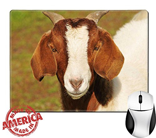 """Price comparison product image Luxlady Natural Rubber Mouse Pad/Mat with Stitched Edges 9.8"""" x 7.9"""" close up of goat face IMAGE ID 4315156"""