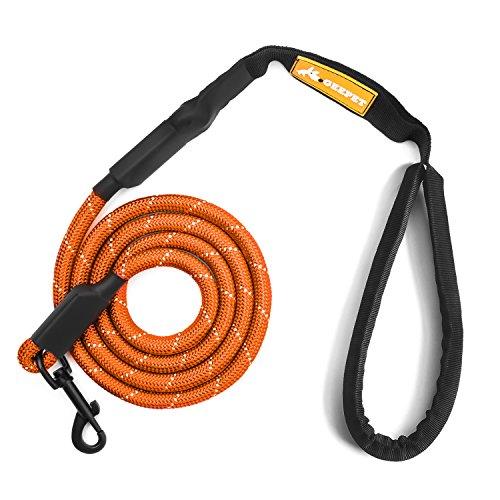 Orange 6' Dog Leash - 6