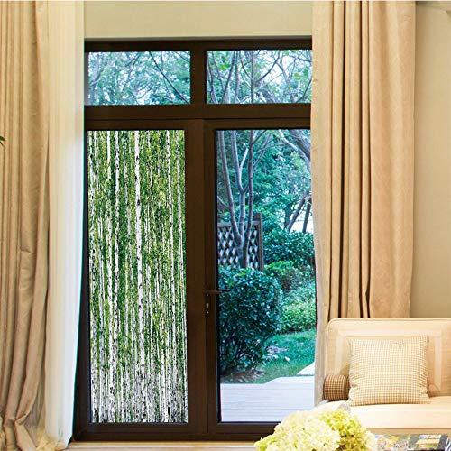 YOLIYANA Decorative Window Film,Birch Tree,for Bedroom Living Room Kitchen,Fresh Green Leaves Summer Forest Rural Landscape Lush,24''x70''