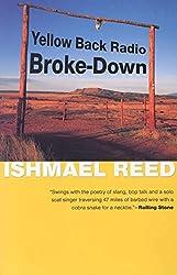 Yellow Back Radio Broke-Down (American Literature (Dalkey Archive))