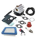 weed eater spark plug - Panari 632671 Carburetor + Air Filter Spark Plug for Tecumseh 632671A 632671B 632671C VLV126 VLV60 VLV40 VLV50 VLV55 VLV65 VLV66 Toro Craftsman Lawn Mower