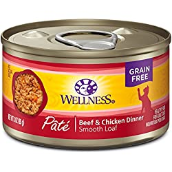 Wellness Natural Grain Free Wet Canned Cat Food, Beef & Chicken Pate, 3-Ounce Can (Pack Of 24)