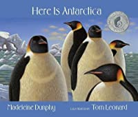 Here Is Antarctica (Web Of