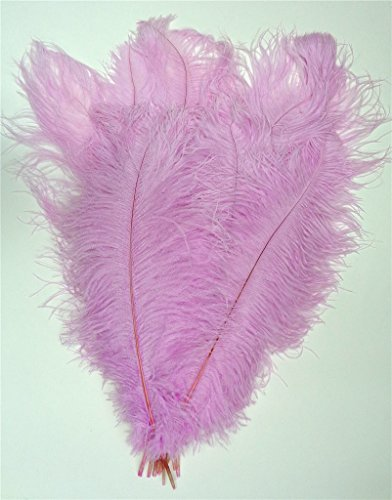 Ostrich Feathers, Standard, 12-16 inch, per Dozen Select - Priority Prices International Mail