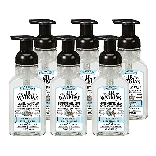 JR Watkins Foaming Hand Soap, Ocean Breeze, 6 Pack, Scented Foam Handsoap for Bathroom or Kitchen, USA Made and Cruelty Free, 9 fl oz