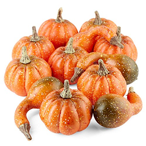 Factory Direct Craft Package of Mixed Artificial Pumpkins and Gourds for Fall Decorating - 12 Pieces by Factory Direct Craft