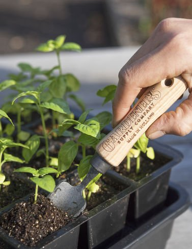 Gardener's Supply Lifetime Mini Trowel by Gardener's Supply Company