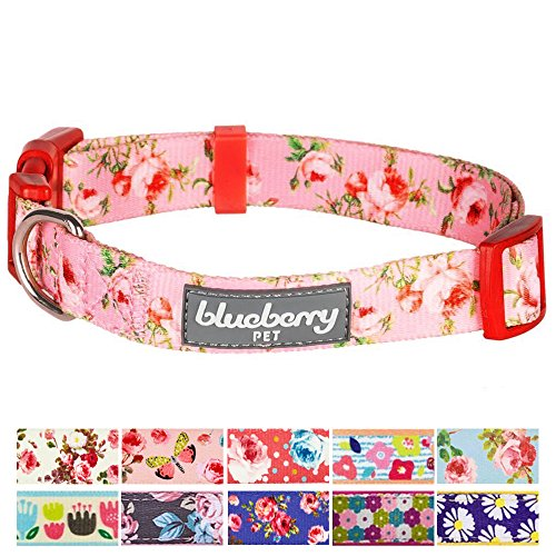 "Blueberry Pet 11 Patterns Spring Scent Inspired Floral Rose Baby Pink Dog Collar, X-Small, Neck 7.5""-10"", Adjustable Collars for Dogs"