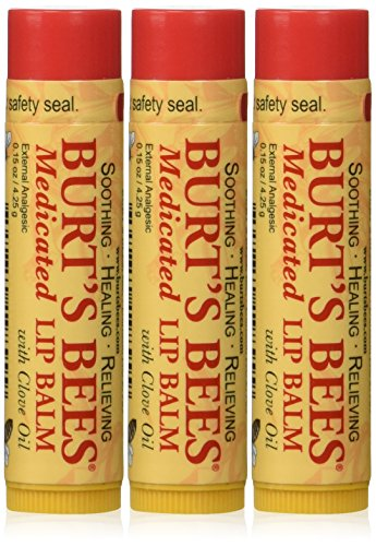 Burt's Bees Burt's Lip Care Medicated Lip Balm with Clove Oil 0.15 oz. tube Lip Balms (Pack of 3)