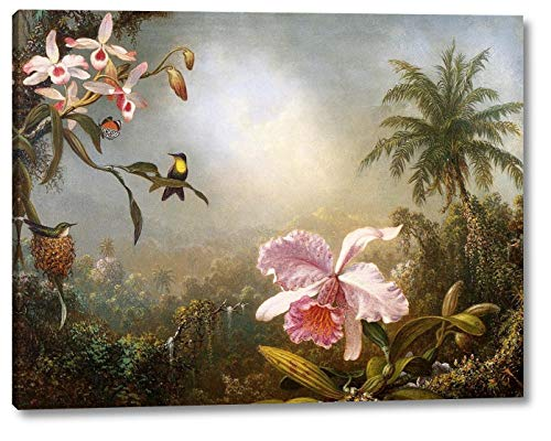 Orchids, Nesting Hummingbirds and a Butterfly by Martin Johnson Heade - 8
