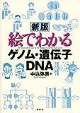 新版 絵でわかるゲノム・遺伝子・DNA (KS絵でわかるシリーズ)