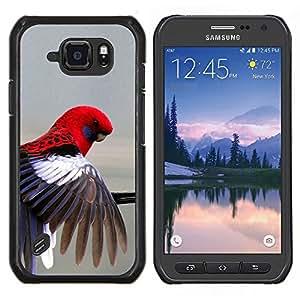 TECHCASE---Cubierta de la caja de protección para la piel dura ** Samsung Galaxy S6 Active G890A ** --loro rojo en colores pastel gris plumas de aves tropicales