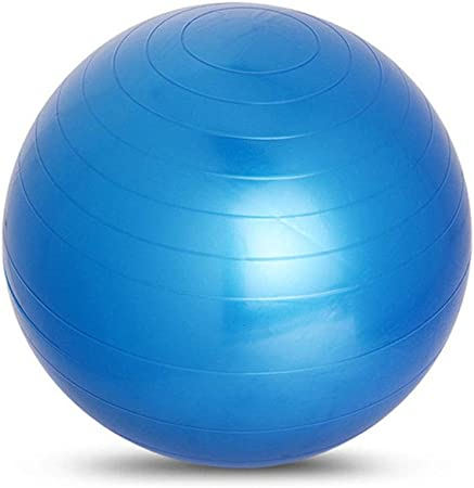 Amazon.com: WJL Yoga Fitness Ball (Multiple Colors), 65cm ...
