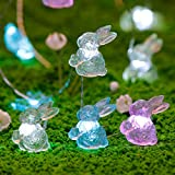 Impress Life Easter Decorations Lights, Rabbit Bunny Festive String Lights Battery with Remote for Indoor Outdoor Wedding Camping, Birthday Bedroom House, Patio, DIY Home Parties Decor