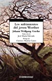 Los sufrimientos del joven Werther / The Sorrows of Young Werther (Spanish Edition)