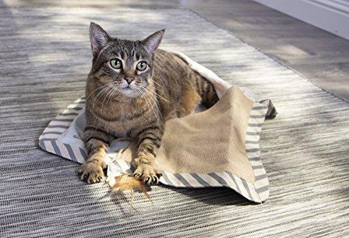 Petlinks Floor Cat Scratchers, Petlinks Knead & Seek