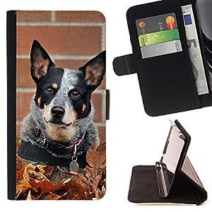 Momo Phone Case / Flip Funda de Cuero Case Cover - Ganado Spots Perro Negro; - HTC One Mini 2 M8 MINI