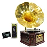 Pyle Turntable Record Player and Pre-Amplifier Package - PVNP4CD Vintage Phonograph Horn Turntable With CD, Cassette, AM/FM, Aux-In, USB-to-PC Recording - PP999 Phono Turntable Pre-Amplifier