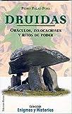 Druidas, P. Palao Pons, 8488885741