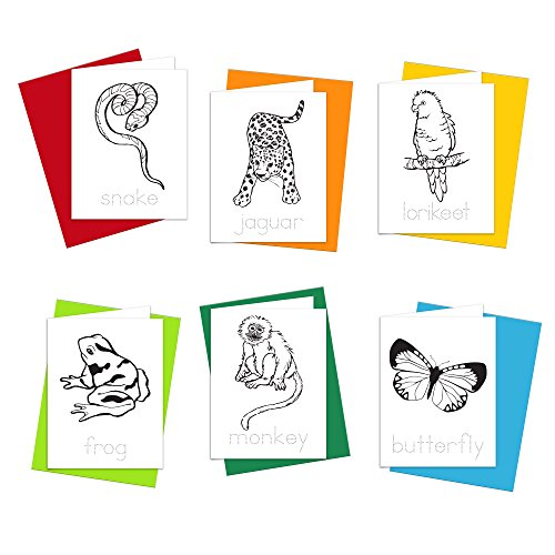 Note Cards - Rainforest Animals Greeting Cards for Kids to Color, Trace Letters and Practice Writing - Eco-friendly Stationery for Children - 100% Recycled Note Cards with Envelopes - Blank Inside
