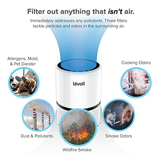 Levoit Air Purifier Filtration with True HEPA Filter, Compact Odor Allergies Allergen Eliminator Cleaner for Room, Home, Dust, Mold, Smoke, Pets, Smokers, Cooking, Night Light, LV-H132