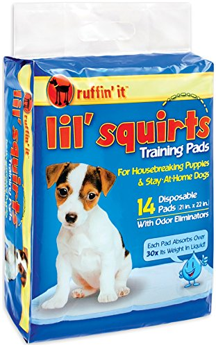 lil squirts - 5