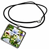 3dRose Danita Delimont - Gardens - USA, Oregon, Keizer, Schreiners Iris Garden - US38 RBR0717 - Rick A Brown - Necklace With Rectangle Pendant (ncl_146206_1) offers