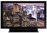 Pioneer Elite PRO111 FD 50-Inch Elite 1080p Plasma HDTV