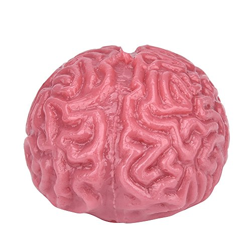Little Story  Dolls Clearance , Novelty Squishy Brain Toy Squeezable Fun Toys Relieve Stress Ball Cure Toy from Little Story
