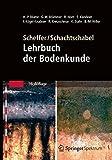img - for Scheffer/Schachtschabel: Lehrbuch der Bodenkunde book / textbook / text book