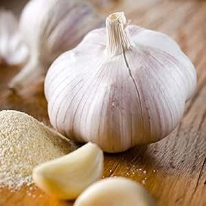 *Organic* Softneck Garlic Silver White - Perfect for Braiding & Mild Climates - 1/2 lb. bag Garlic Bulbs for Planting!