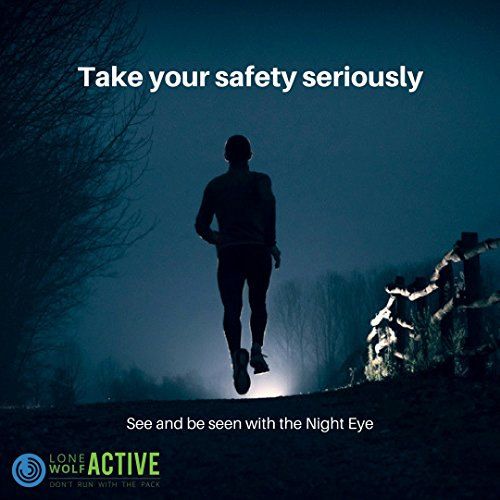 LED Safety Light - Clip On to Stay Safe and Be Seen at Night - Great for Running, Walking, Kids, Dogs, Hiking, Camping, Trail or Bike - USB rechargeable, compact and just 2 Oz