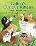 Calico's Curious Kittens, Phyllis Limbacher Tildes, 1570915113