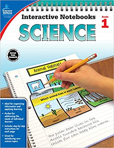 Science Grade 1 Interactive Notebooks Holly Rafidi
