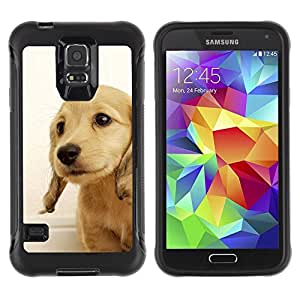Suave TPU Caso Carcasa de Caucho Funda para Samsung Galaxy S5 SM-G900 / Golden Retriever Puppy British Dog Yellow / STRONG