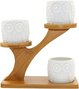 3 Pack Owl Ceramic Succulent Plant Pots with Bamboo Tray (Owl Style)