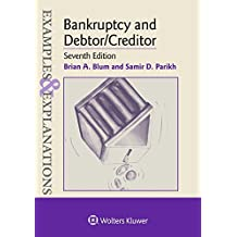 Examples & Explanations for Bankruptcy and Debtor/Creditor