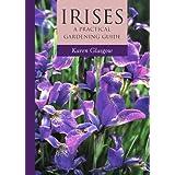 Irises: A Practical Gardening Guide