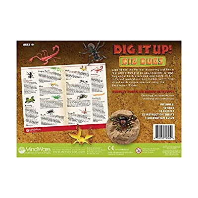 MindWare Dig It Up! Big Bug Stones Excavation kit: Toys & Games