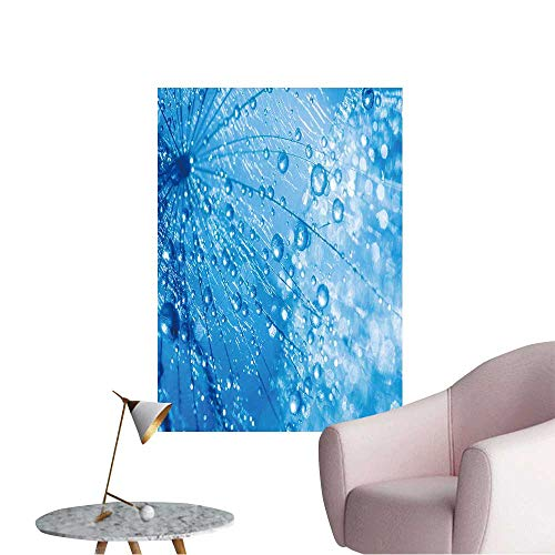 Wall Painting Abstract Dandelion Flower Seeds with Water Drops Background High-Definition Design,12