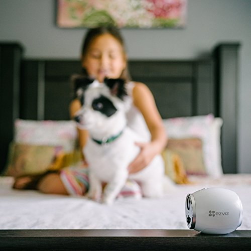 EZVIZ Mini Trooper Wire-Free Indoor / Outdoor Security Camera System with 8GB MicroSD Card, Works with Alexa by EZVIZ (Image #9)