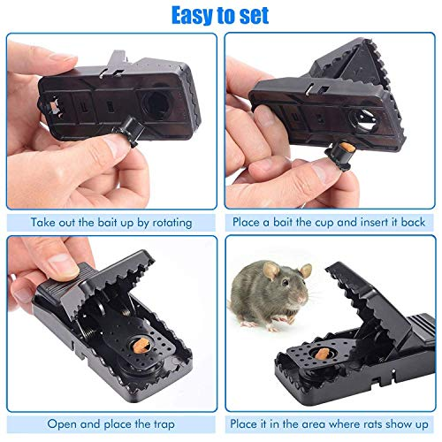 Charlemain Mouse Traps Reusable Snap Mice Traps That Work Rodent Killer Easy to Bait, 6 Pack