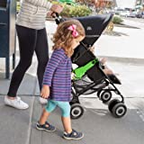 Skip Hop Walk-Along Stroller Handle