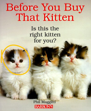 Before You Buy That Kitten (Pet Healthcare)