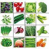 Golden autumn Farm 16 Varieties Seeds of Vegetables Combination