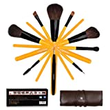 SHANY Cosmetics Urban Gal Collection Brush Set (9 Piece Natural Brushes with Roll-Up Pouch), 13 Ounce