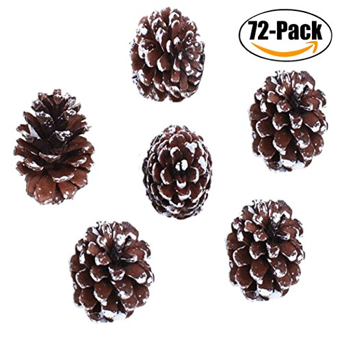 Christmas Hanging Ornaments,Outgeek 72 Pack Natural Pine Cone Pendant Set Wood Frosted Pinecone Ornaments for Kids Xmas Garden Home Tree (Snow Pinecones)